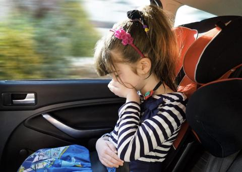 Car Sickness Research to Put Brakes on Family Road Trip Curse – That Even Affects the Pet Goldfish