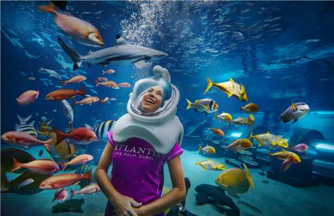 DIVE INTO THE 30TH ANNIVERSARY OF SHARK WEEK WITH SPECIAL MARINE OFFERS AT ATLANTIS, THE PALM